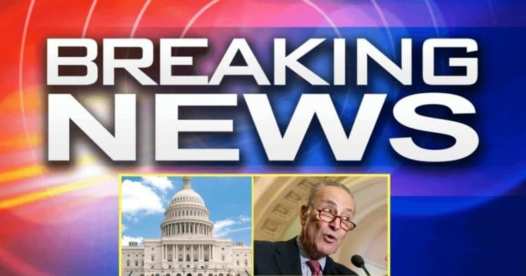 Chuck Schumer Is in Serious Senate Trouble – He's About To Watch GOP Stop Biden's Infrastructure Plan In Its Tracks