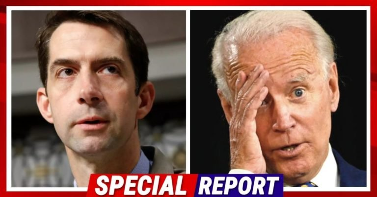 Senator Cotton Just Crushed Biden's Hopes – Tom Is Confident Republicans Will Stop The Biden Amnesty Plan