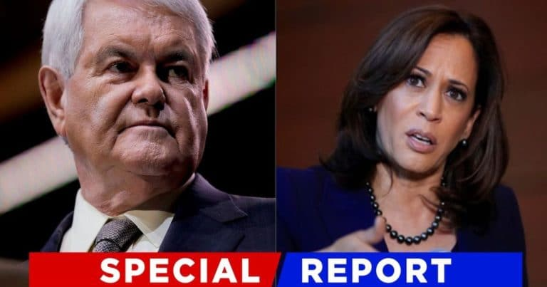 Newt Just Pulled Back The Curtain On Kamala – Gingrich Accuses The Vice-President Of Planning To Do Nothing At The Border